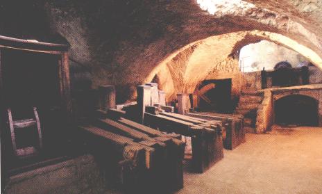 www.museodellacarta.it